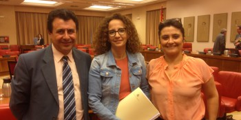 ponentes_ley_montes_sala_constitucional
